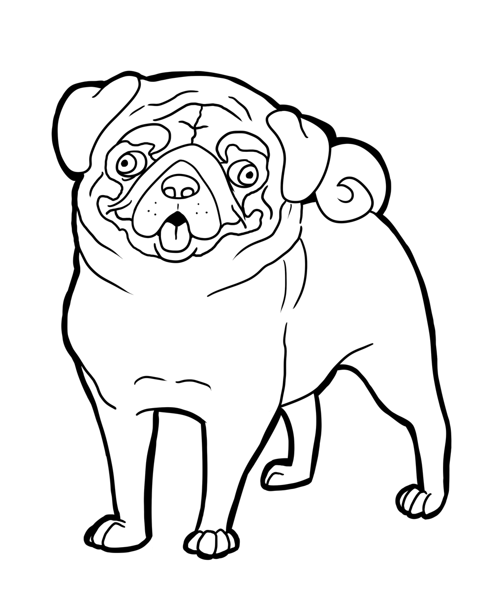 pugs coloring pages to print - photo#13