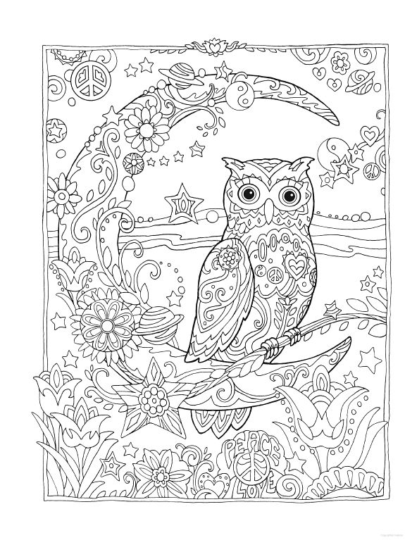 Owl Coloring Pages For Adults Free Detailed Owl Coloring