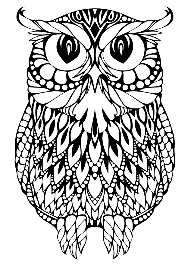 owl coloring page free printable - Printable Owl Coloring Pages For Adults