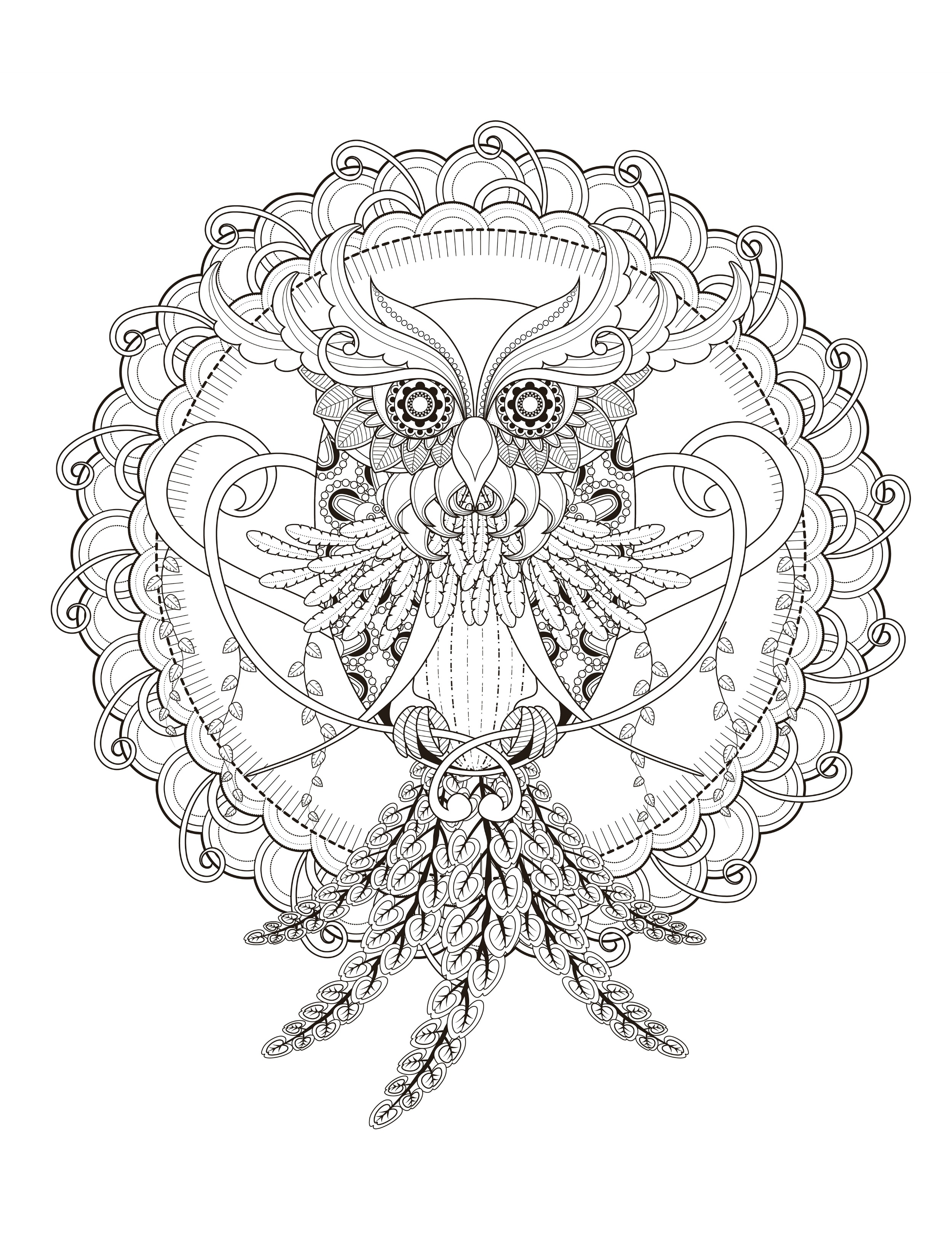 Owl coloring pages free - Print Free Owl Coloring Page For Adults