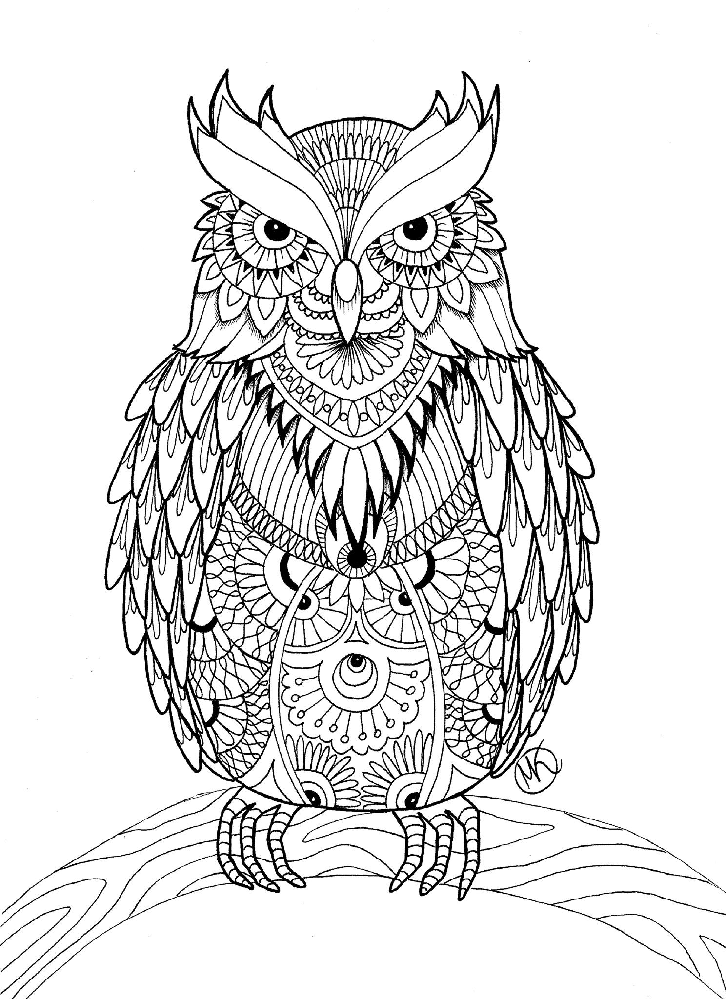 Owl coloring pages for adults free detailed owl coloring for Coloring pages to print for adults