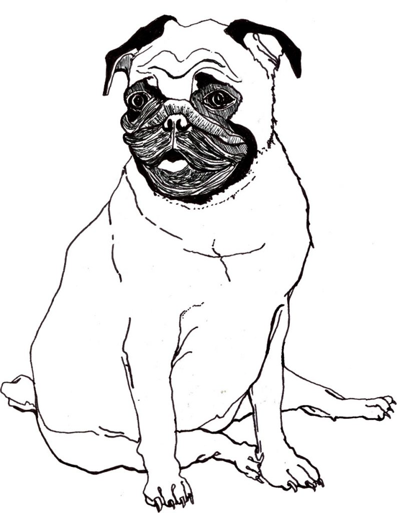 pugs coloring pages to print - photo#19