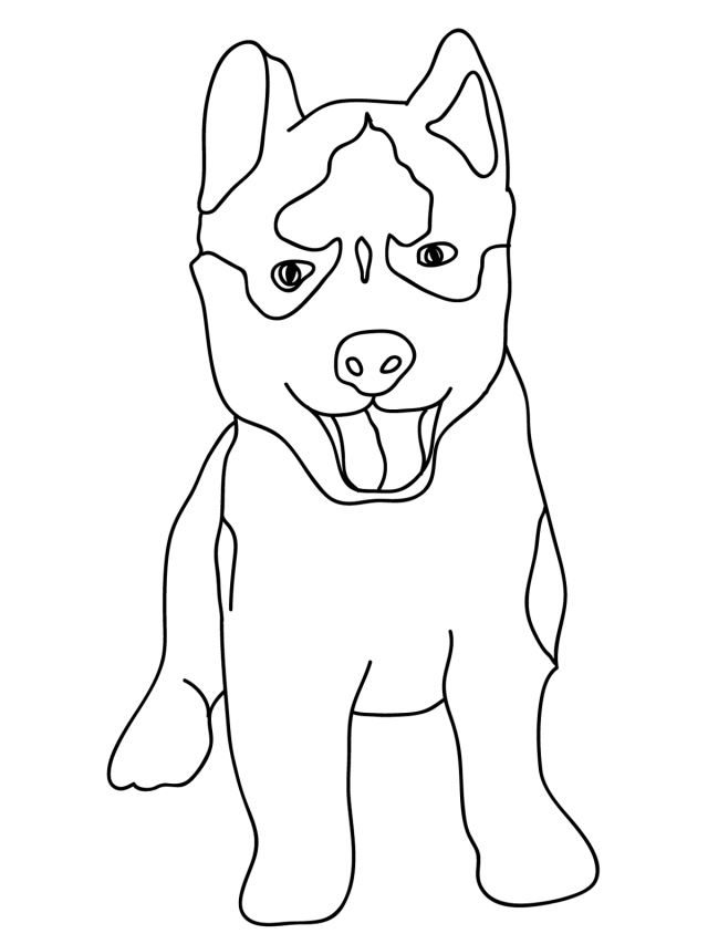coloring pages huskys - photo#12