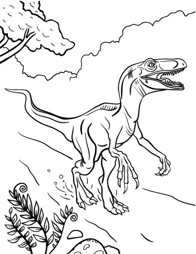 Printable Velociraptor Coloring Pages