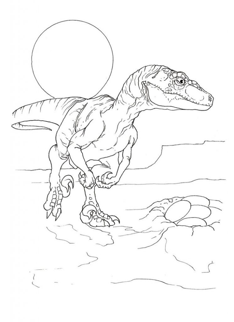 velociraptor jurassic park coloring pages - photo#7