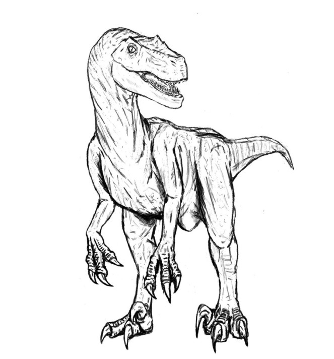 Velociraptor Coloring Pages Free Printables