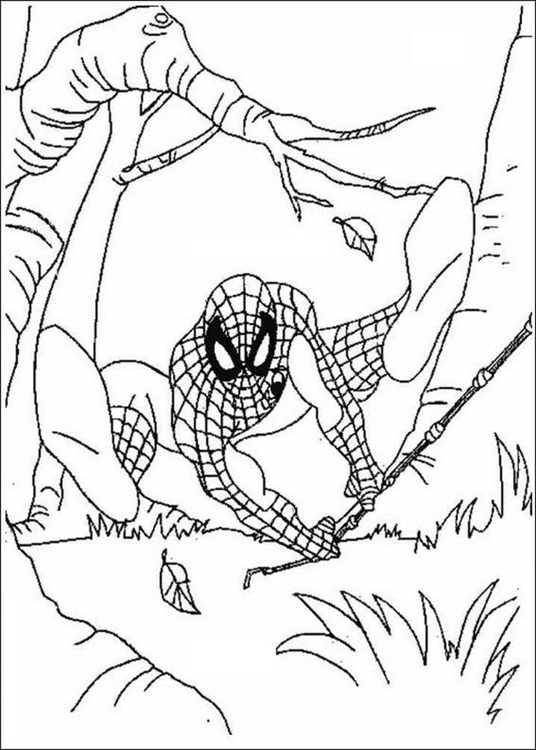 Free Printable Coloring Pages Of Spiderman