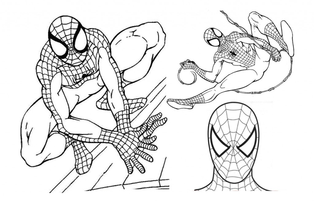 Spiderman print out coloring pages