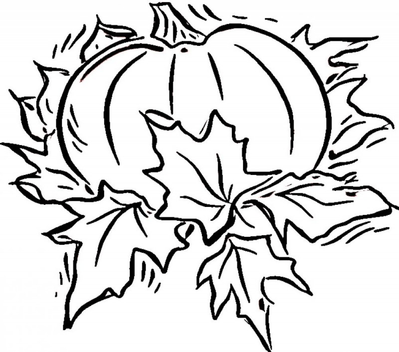 Blank Pumpkin Coloring Page