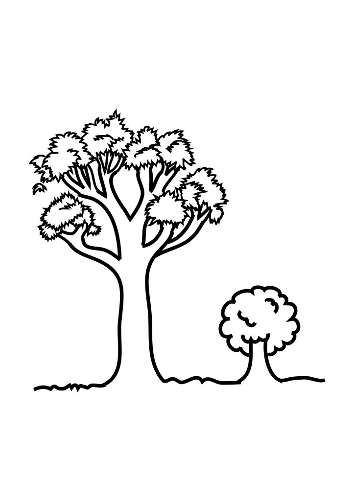 Coloring Pages of Trees For Kids