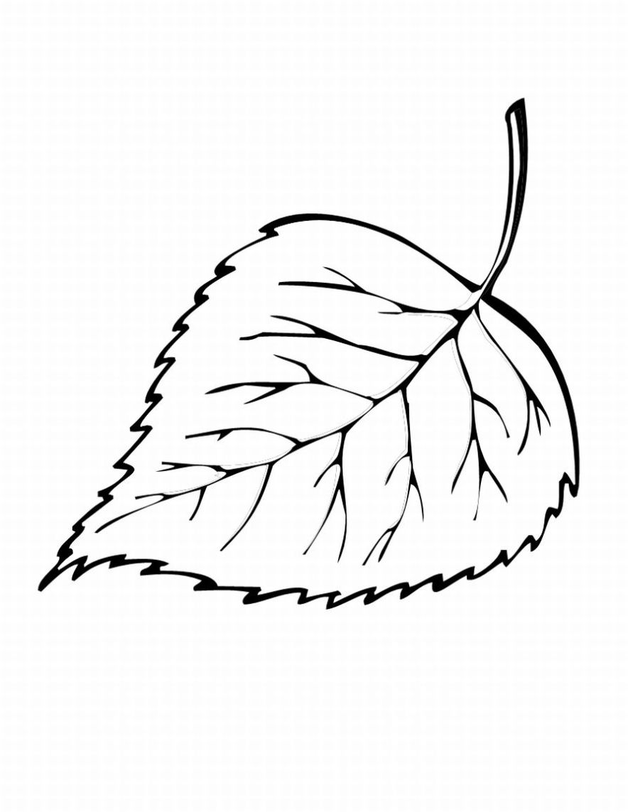 Fall Leaf Coloring Page
