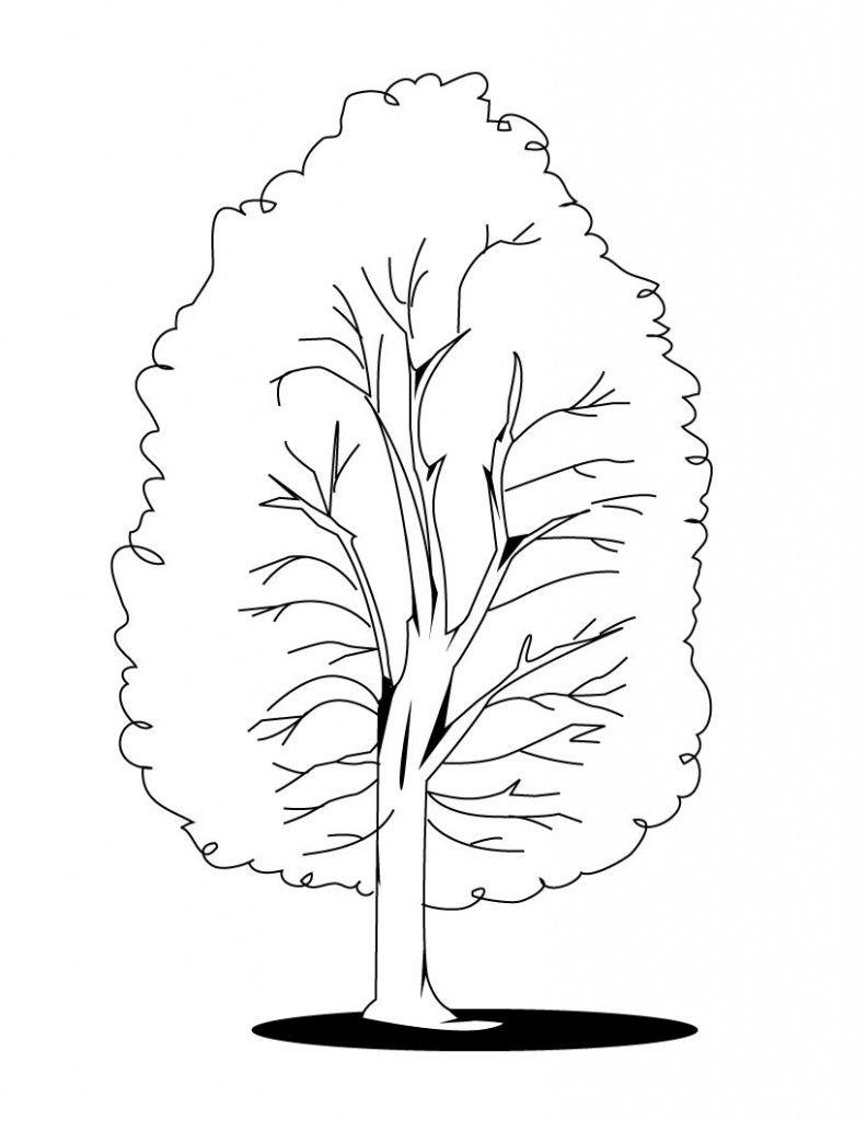 Fall Tree Coloring Pages