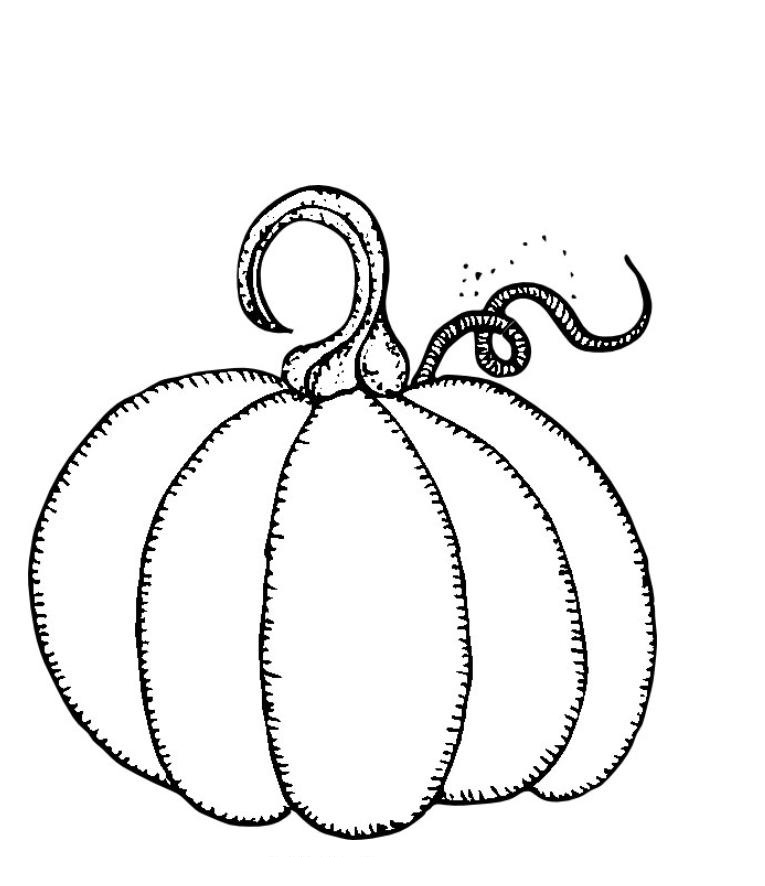 Pumpkin Coloring Pages on Camping Color Pages