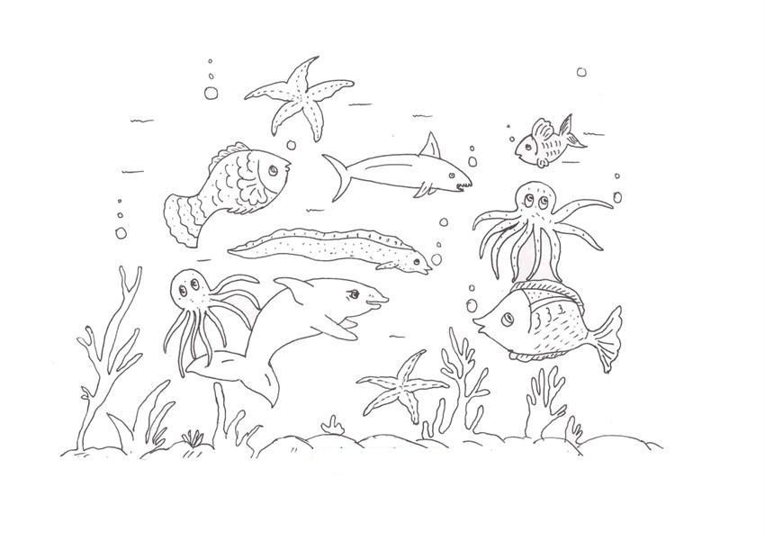 marine animals coloring pages - photo#41