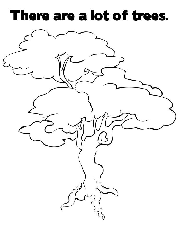 how to draw trees book