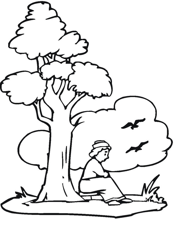 Tree Coloring Page For Kids