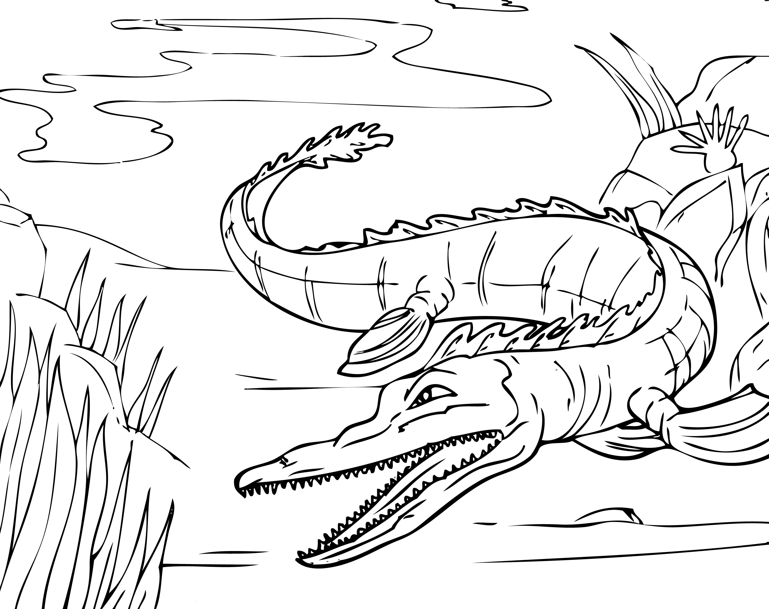 picture about Alligator Printable titled Absolutely free Printable Alligator Coloring Webpages For Youngsters