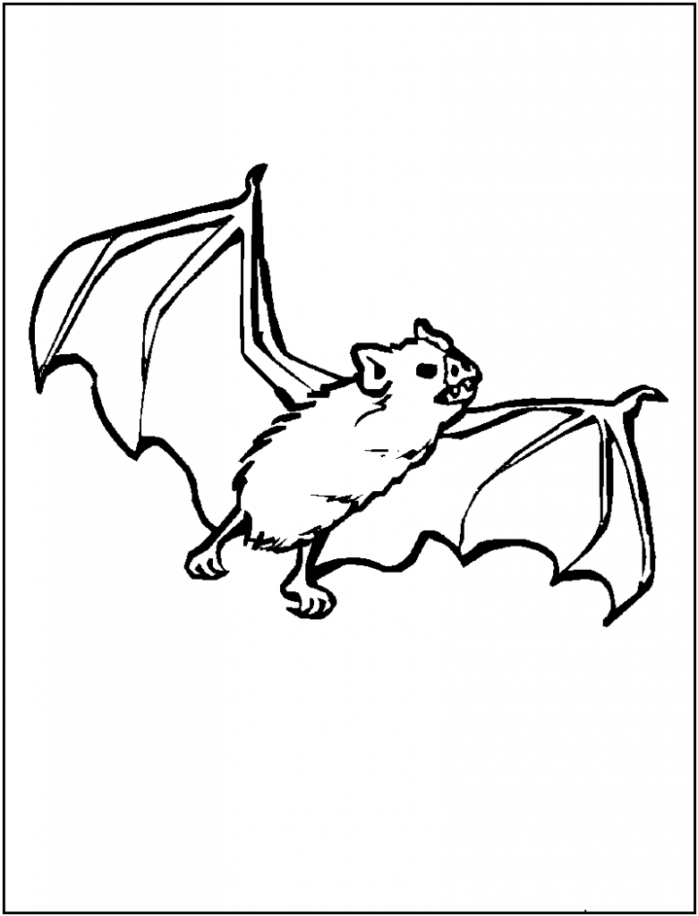 Free printable bat coloring pages for kids for Coloring page images