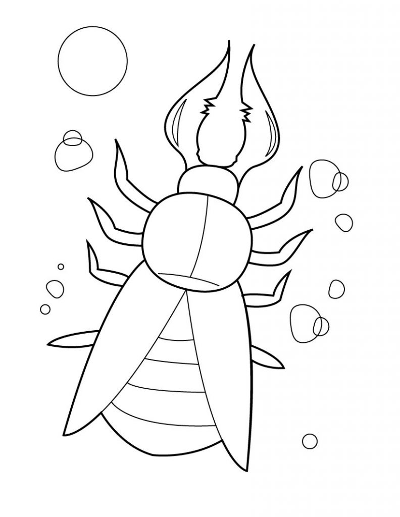 Creepy Bug Coloring Pages