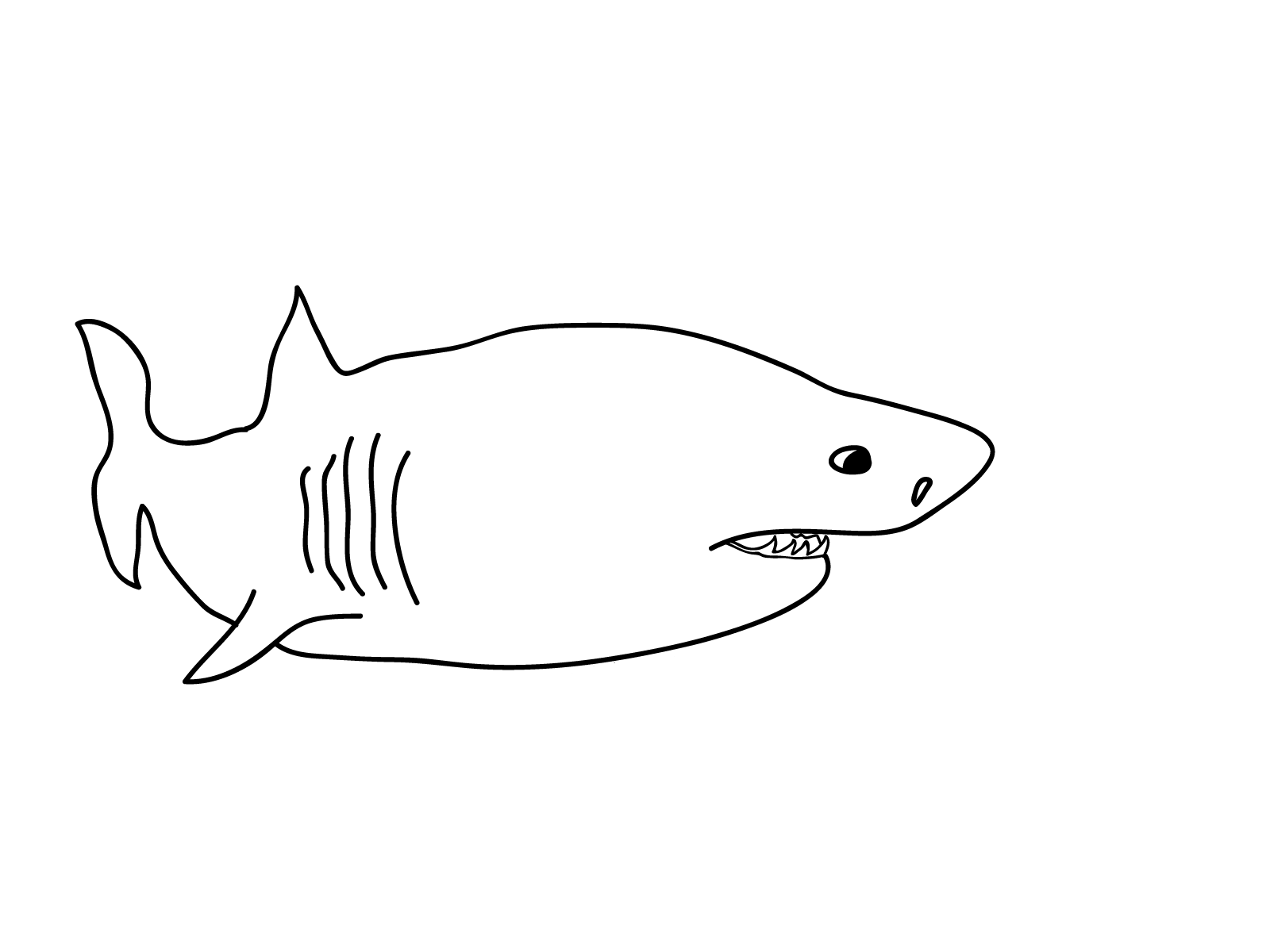 photo regarding Free Printable Shark Coloring Pages identify Free of charge Printable Shark Coloring Webpages For Small children