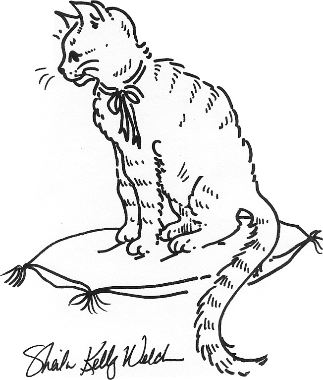printable kitty cat coloring pages | Free Printable Cat Coloring Pages For Kids