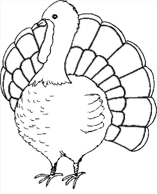 graphic about Free Printable Turkey named No cost Printable Turkey Coloring Internet pages For Little ones