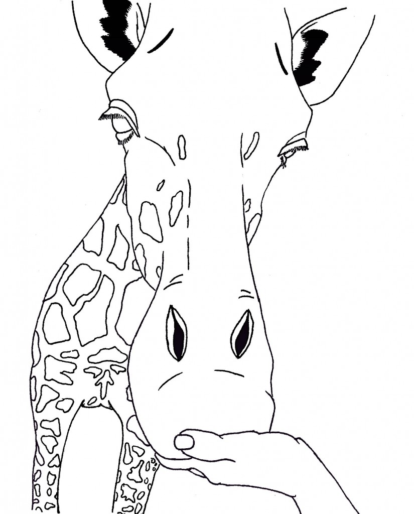 Coloring Page of Giraffe Face