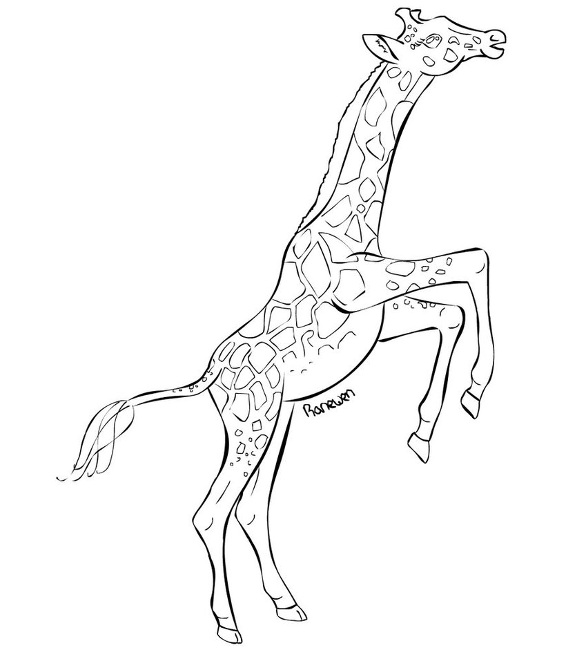 Coloring Page of a Giraffe
