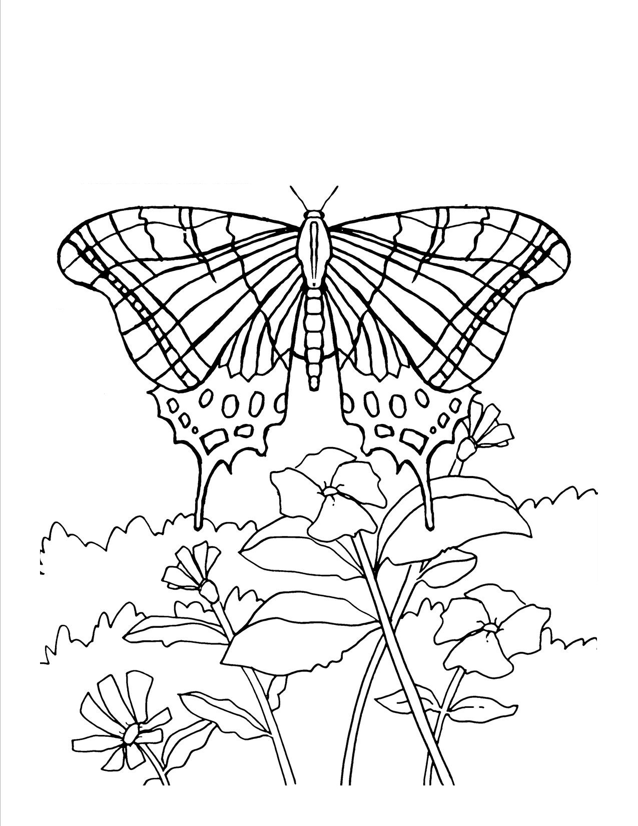 Baskets Of Flowers Coloring Pages