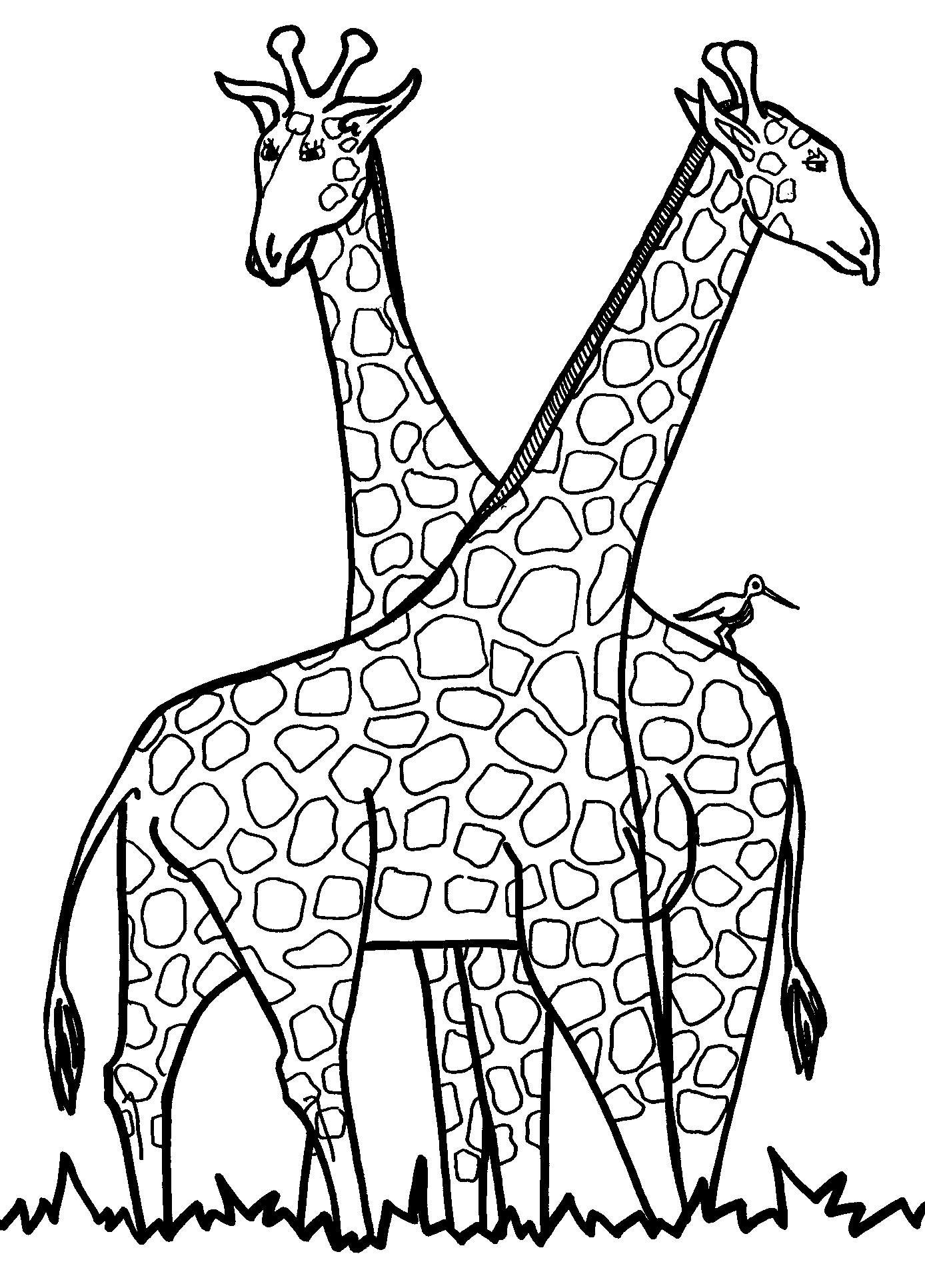 Free printable giraffe coloring pages for kids for Art is fun coloring pages