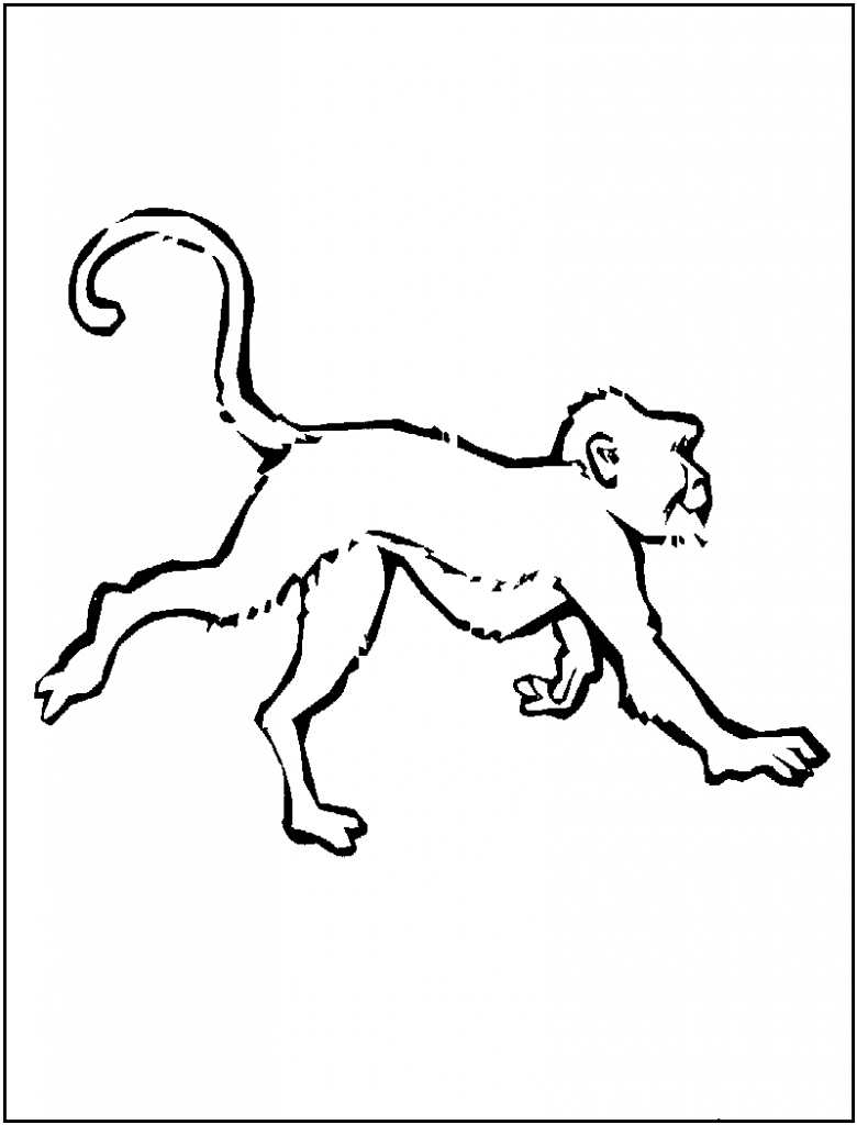 Coloring Pages of a Monkey