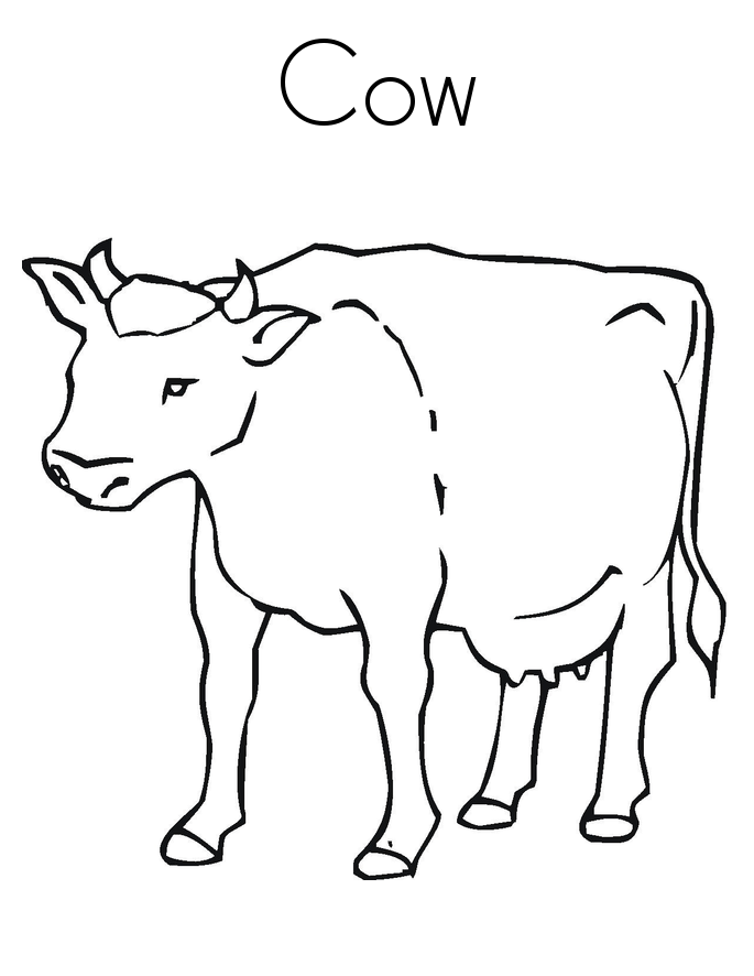 Coloring Pages Cows Free Printable