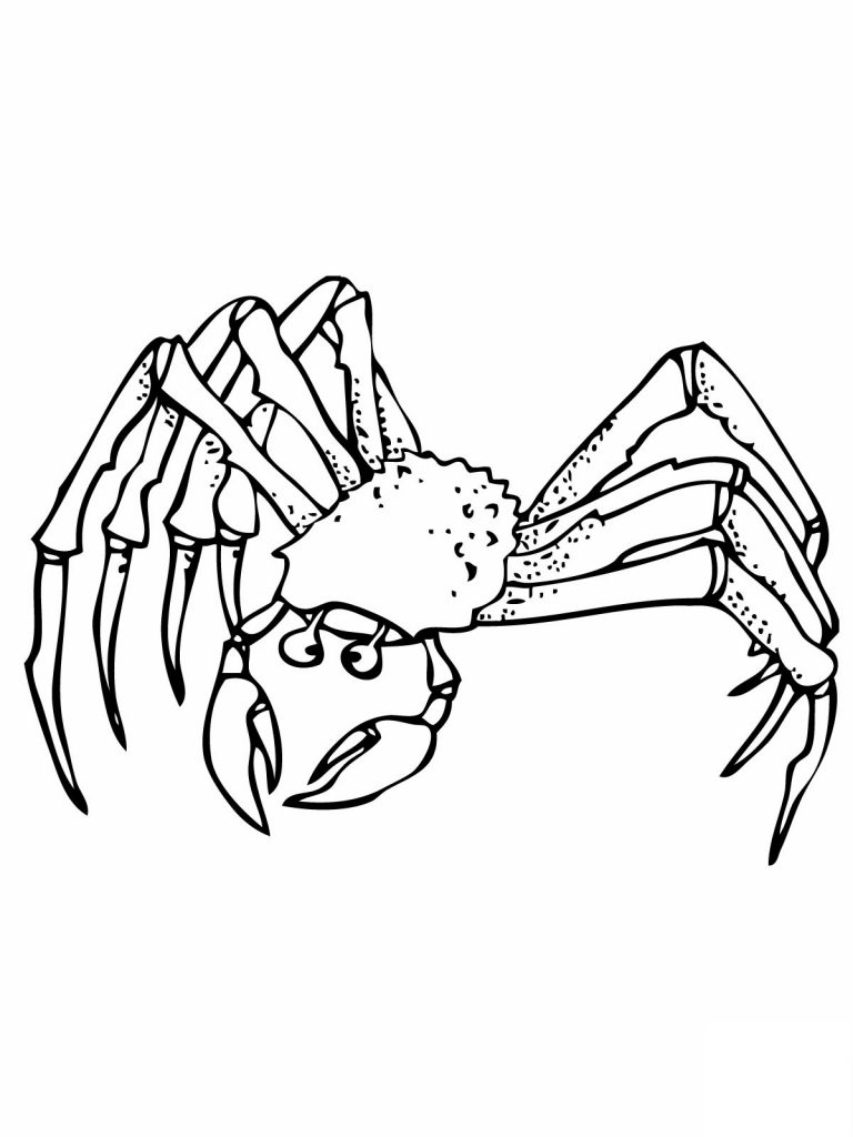Free Printable Crab Coloring Pages