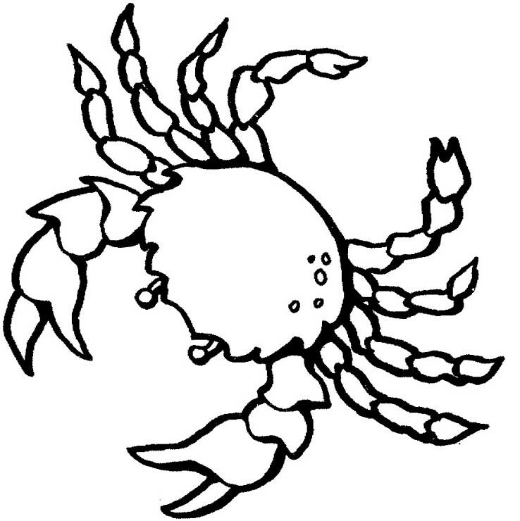 Free Coloring Pages Astrology Cancer