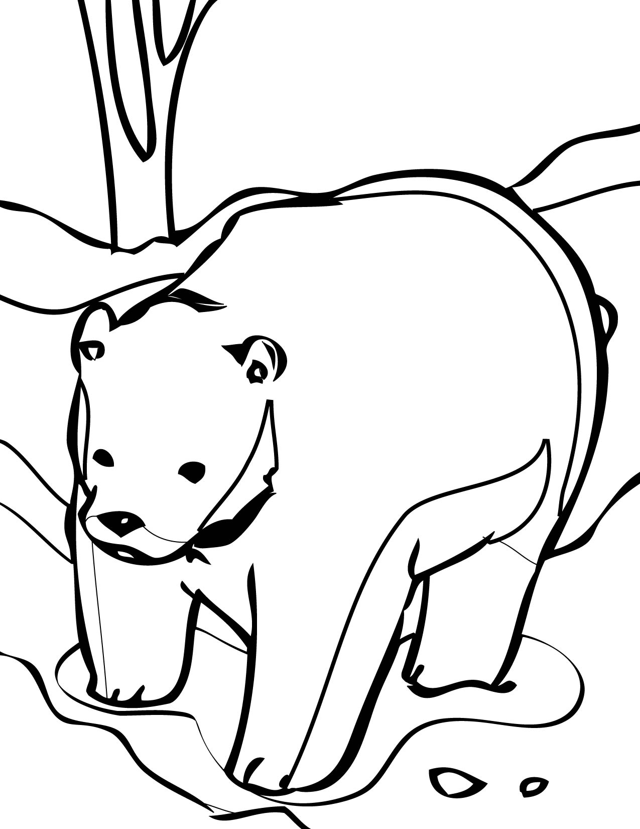 free coloring pages little bear - photo#19