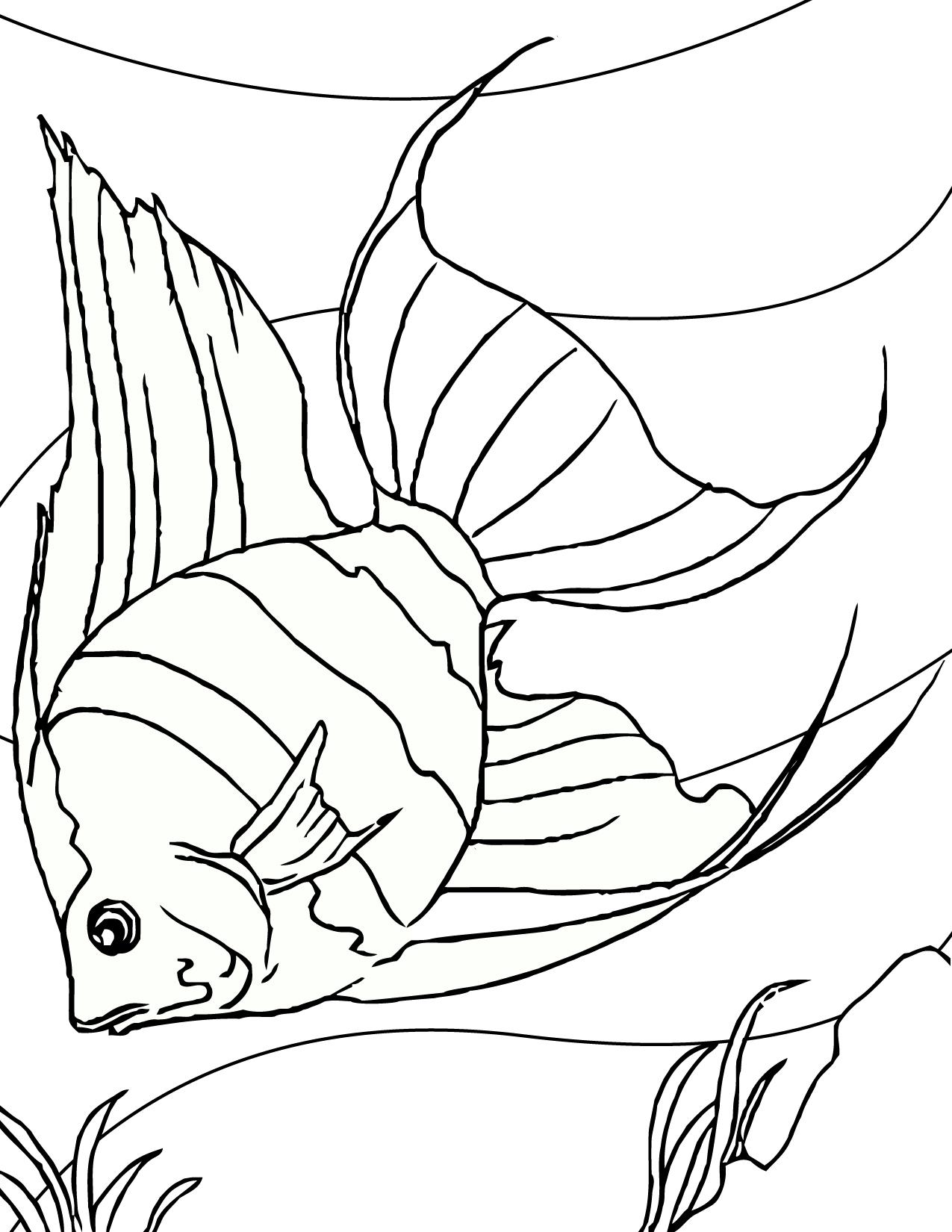 Go Fish! | Fish crafts preschool, Fish coloring page, Fish template | 1650x1275