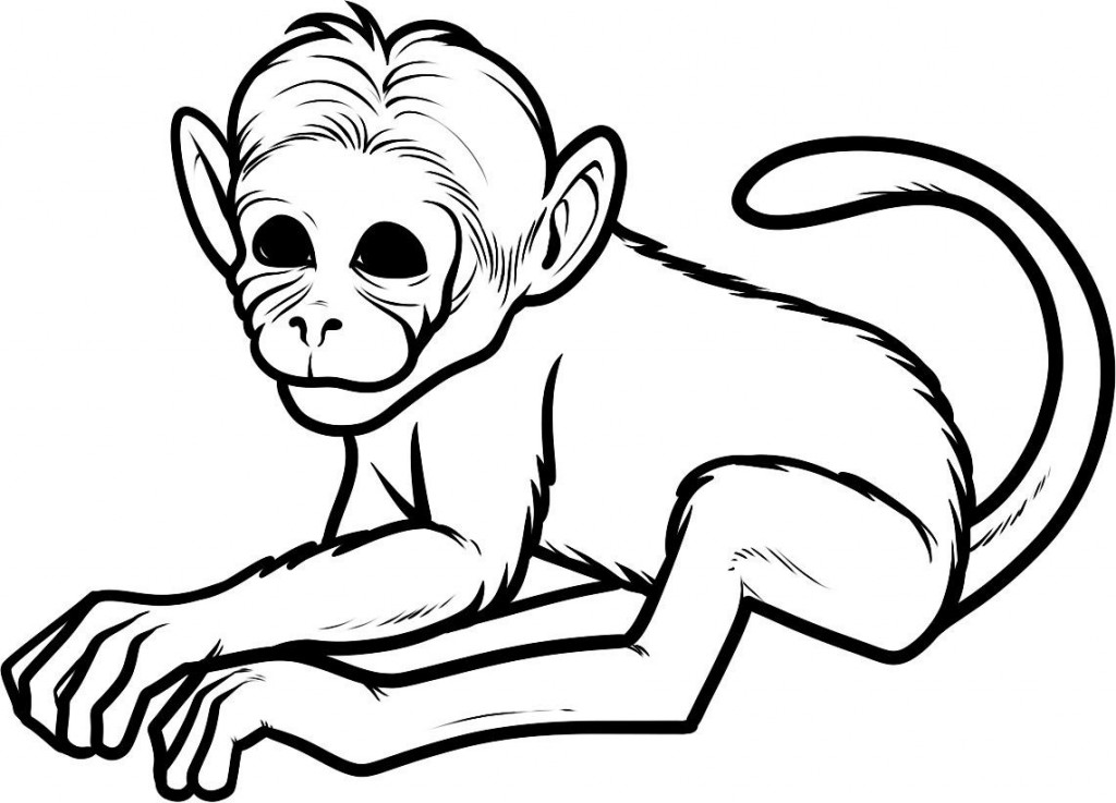 Simplicity image regarding monkey printable coloring pages