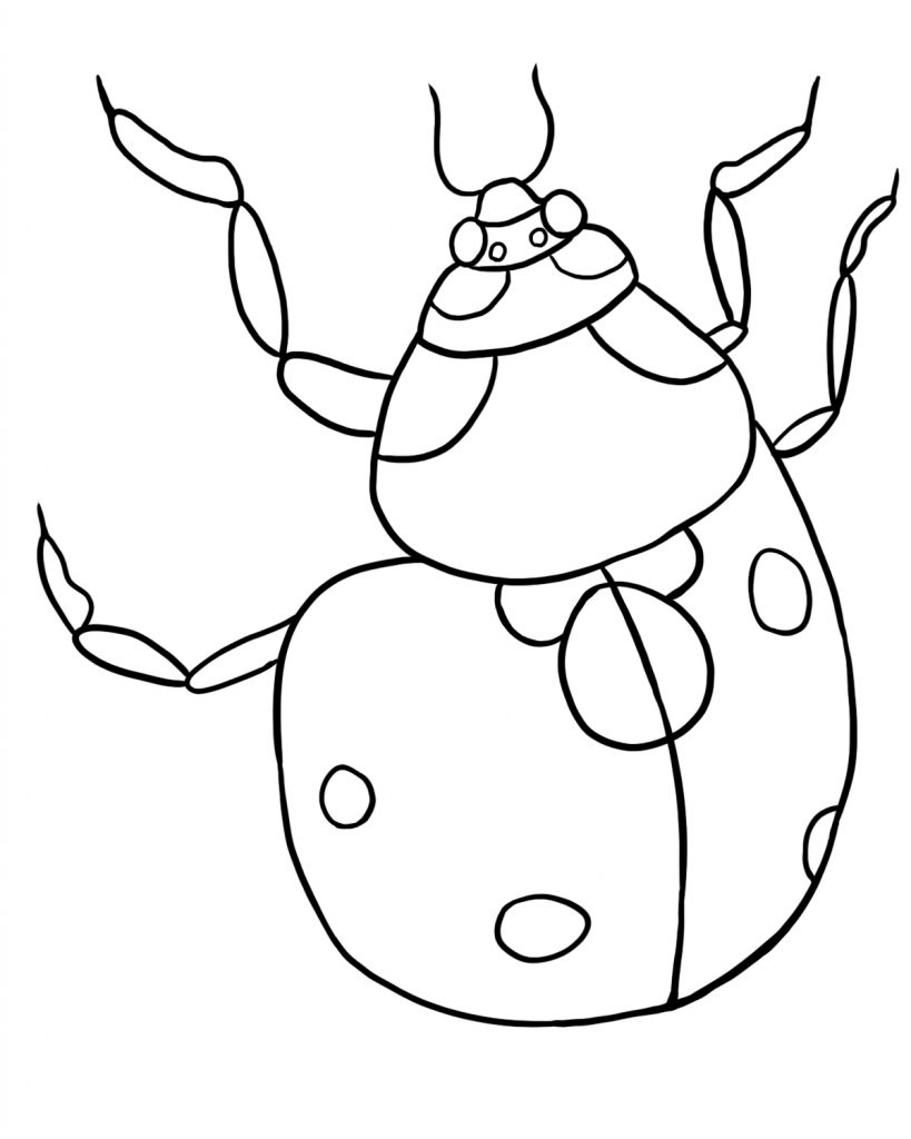 free printable ladybug coloring pages for kids | Free Printable Ladybug Coloring Pages For Kids