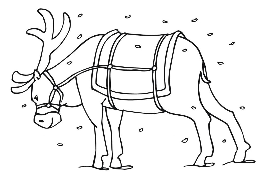reindeer coloring pages free | Free Printable Reindeer Coloring Pages For Kids
