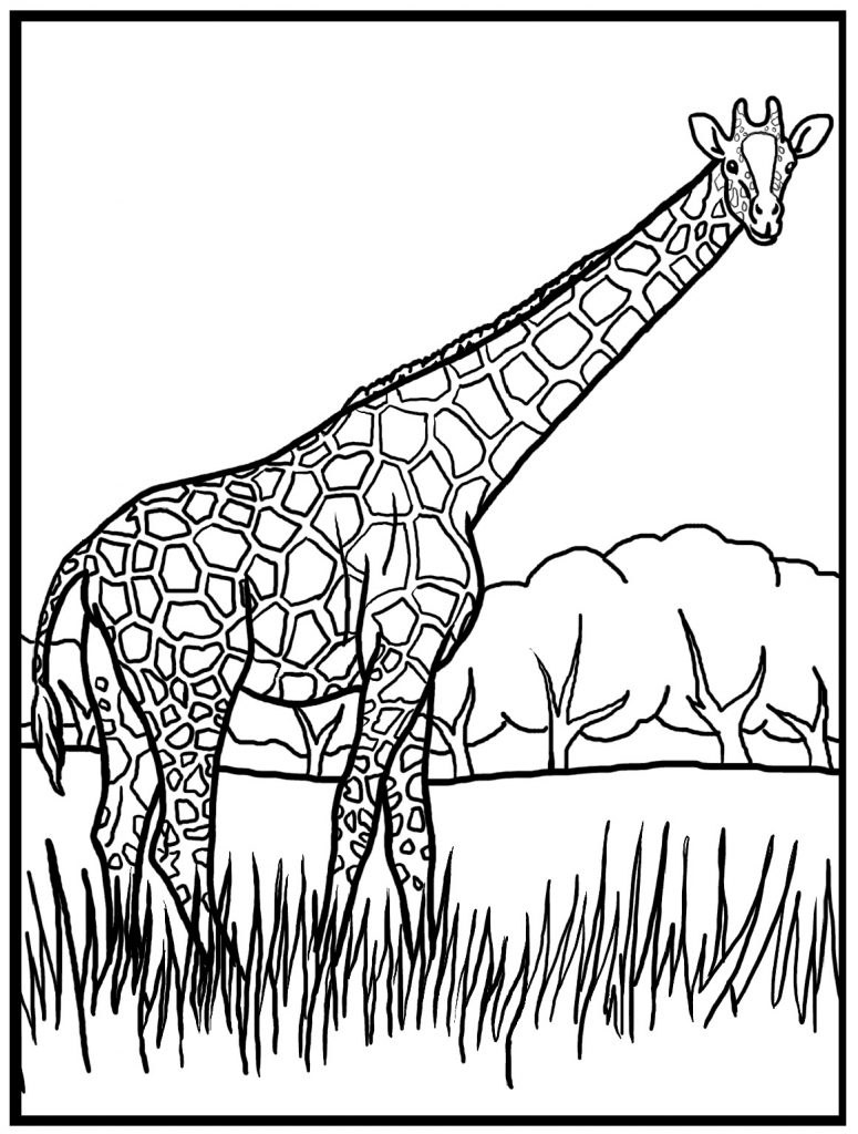 free giraffe coloring pages - photo#6