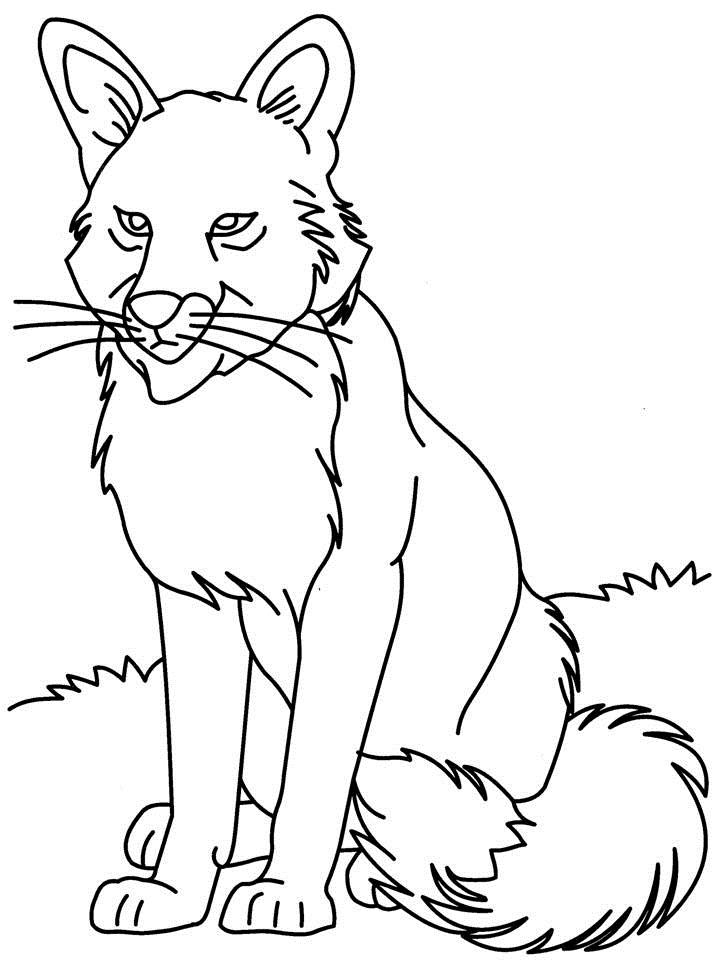 free wolf puppy coloring pages - photo#14