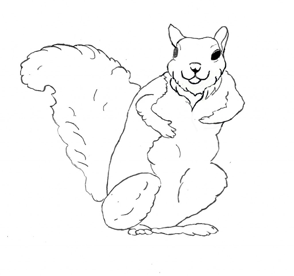 Free Printable Squirrel Coloring