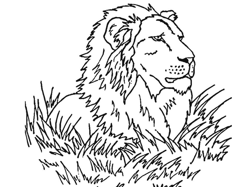 Lion Face Coloring Page