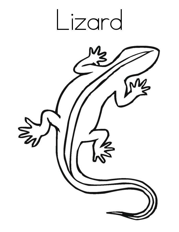Free Printable Lizard Coloring Pages For Kids