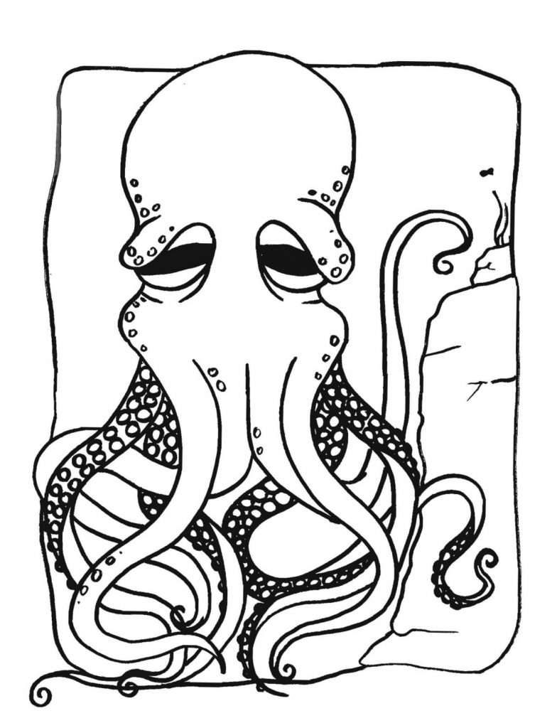 Octopus Coloring Pages Print