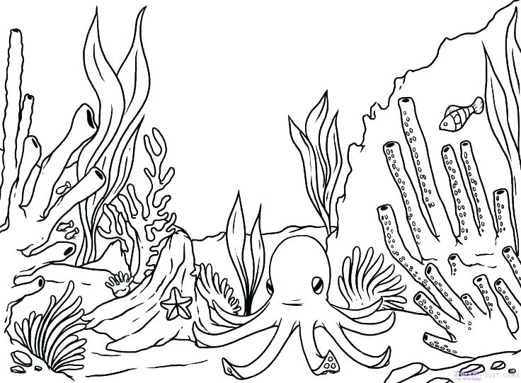 Printable Ocean Scene Coloring Page