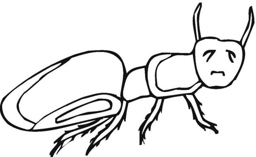 Printable Ant Coloring Pages For Kids