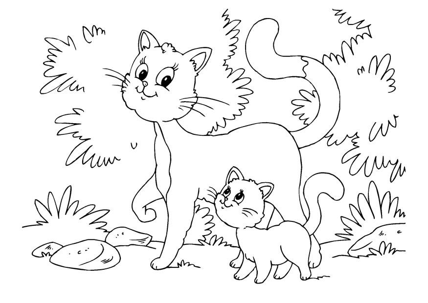 Printable Coloring Pages of Cats