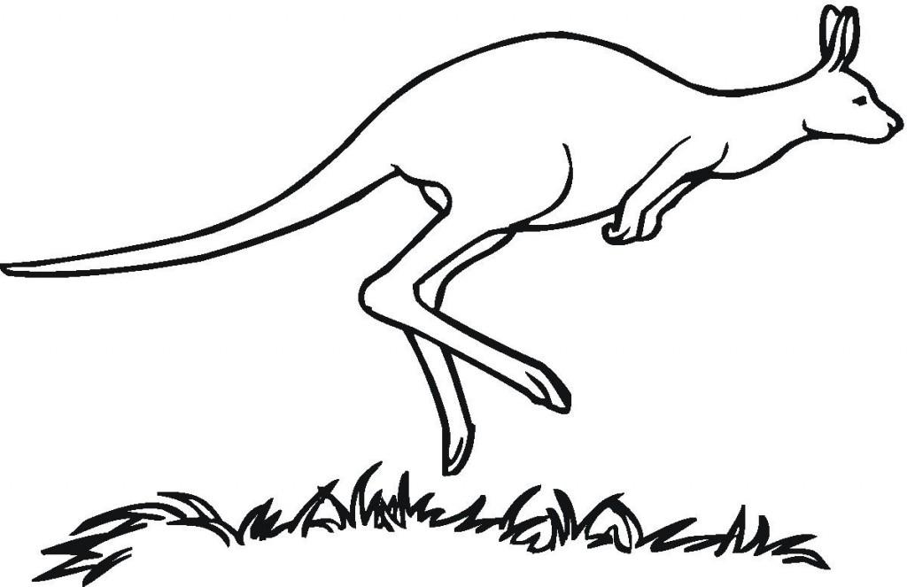 Printable Kangaroo Coloring Pages