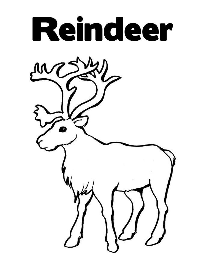 Printable Reindeer Coloring Pages